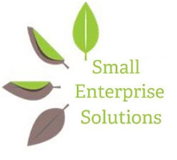 Small Enterprise Solutions