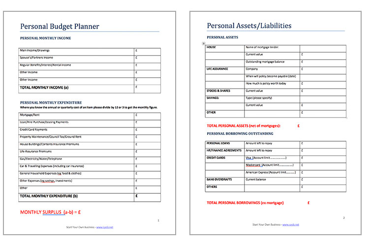 Free Business Survival Budget Template